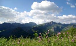 Ландшафт Picos de Европа горы Стоковые Фото