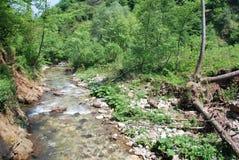 Ландшафт rive в Турции Стоковые Фото