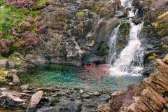 Ландшафт Snowdonia Река пропускает вниз с горы Стоковое фото RF