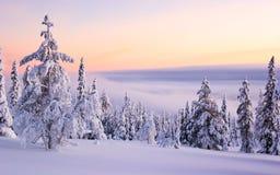 Ландшафт Snowy  Стоковые Фотографии RF