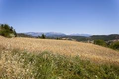 Ландшафт Solsona с рядом Montsec на предпосылке Стоковые Фотографии RF
