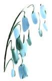 Ландыш акварели цветет картина впечатления Стоковое Изображение RF