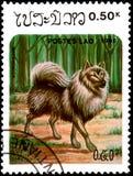 ЛАОС - ОКОЛО 1986: штемпель почтового сбора, напечатанный в Лаосе, показывает Keeshon Стоковая Фотография