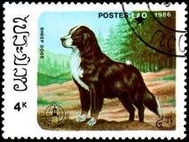 ЛАОС - ОКОЛО 1986: штемпель почтового сбора, напечатанный в Лаосе, показывает Sheepdo Стоковые Изображения RF