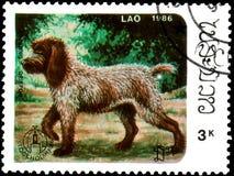 ЛАОС - ОКОЛО 1986: штемпель почтового сбора, напечатанный в Лаосе, показывает Pointin Стоковое Изображение RF