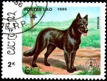 ЛАОС - ОКОЛО 1986: штемпель почтового сбора, напечатанный в Лаосе, показывает Bernese Стоковая Фотография