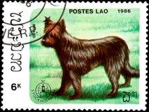 ЛАОС - ОКОЛО 1986: штемпель почтового сбора, напечатанный в Лаосе, показывает briard Стоковое Изображение