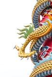 Лапка дракона или изверга Стоковые Изображения RF
