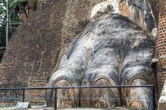 Лапка льва ворот утеса льва Шри-Ланка Sigiriya стоковые фото