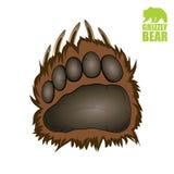 Лапка медведя гризли иллюстрация вектора