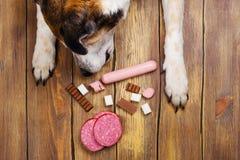 Лапки собак и клюв и куча запрещенной еды собак на деревянной предпосылке стоковое изображение