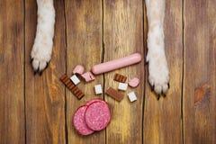 Лапки собак и клюв и куча запрещенной еды собак на деревянной предпосылке стоковые изображения rf
