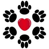 Лапки с сердцем на белой предпосылке Стоковое Фото