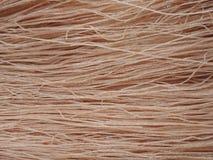 Лапша риса Брайна высушенная стоковая фотография rf