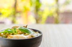Лапши риса в соусе карри цыпленка с овощами Стоковые Изображения