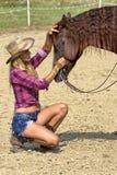 Ласкать лошадь стоковая фотография
