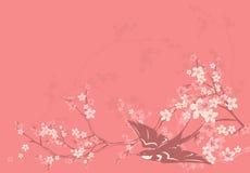 Ласточка весны Стоковые Изображения