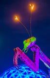 Лас-Вегас, парк контейнера Стоковое Фото