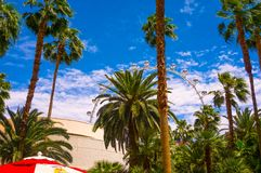 Лас-Вегас, Соединенные Штаты Америки - 5-ое мая 2016: Крупный игрок на Linq, обедая и ходя по магазинам район на стоковые изображения