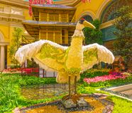 Лас-Вегас, Соединенные Штаты Америки - 5-ое мая 2016: Японский цветя сад на роскошной гостинице Bellagio Стоковая Фотография