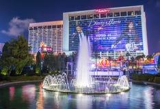 Лас-Вегас, фламинго Стоковая Фотография