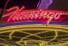 Лас-Вегас, фламинго Стоковое Изображение RF