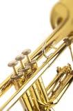 Латунная труба Стоковые Фото