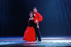 латынь танцульки Стоковые Изображения