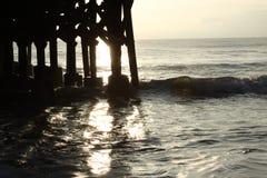 Лачуга краба океана Стоковое Фото