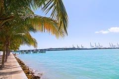 Ладони в ряд с симметричными тенями вдоль водного пути в Miami Beach, Флориде, США Стоковая Фотография RF