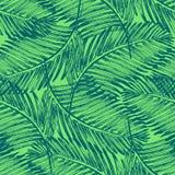 Ладонь выходит иллюстрация Тропический завод джунглей Стоковое Изображение RF
