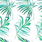 Ладонь выходит картина тропическое картины безшовное Стоковые Фотографии RF
