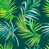 Ладонь выходит картина тропическое картины безшовное Стоковые Изображения RF