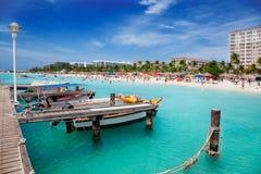 ладонь пляжа aruba Стоковое Фото