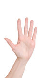 Ладонь руки женщины на белизне изолировала предпосылку Стоковая Фотография