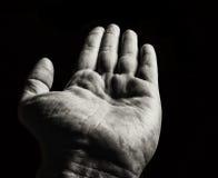 Ладонь. Monochrome изображение. Стоковое Фото