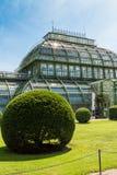 Ладонь Pavillon на дворце Schoenbrunn, вене Стоковые Изображения RF