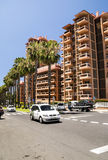 Ладон-выровнянная улица в Puerto de Ла Cruz Стоковые Фотографии RF