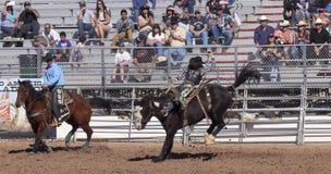 Ла Фиеста De Лос Vaqueros, Tucson, Аризона Стоковое Изображение RF