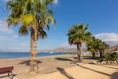 Ла Azohia Мурсия Испания с набережной и пальмами стоковые изображения