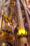 Ла Seu Palma de Mallorca собора Стоковые Фото