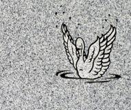 лебедь гравировки Стоковые Фото
