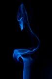 лебедь дыма Стоковые Фотографии RF