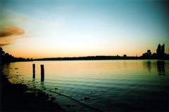 лебедь захода солнца реки Стоковая Фотография RF