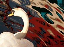 лебедь отражений Стоковые Изображения RF