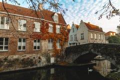 лебедь плавая на спокойную воду канала и красивых традиционных зданий с мостом стоковые фотографии rf