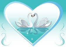лебедь предпосылок Стоковые Фото