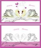 Лебеди украшения пар на волнах бесплатная иллюстрация