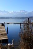 Лебедь озеро и горная вершина стоковое фото rf