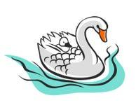 Лебедь с младенцем на ей назад Стоковые Фотографии RF